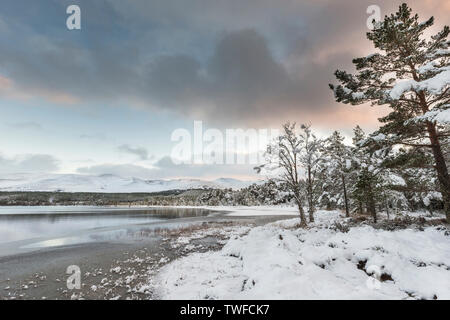 Winter on Loch Morlich in the Cairngorms National Park of Scotland. - Stock Photo