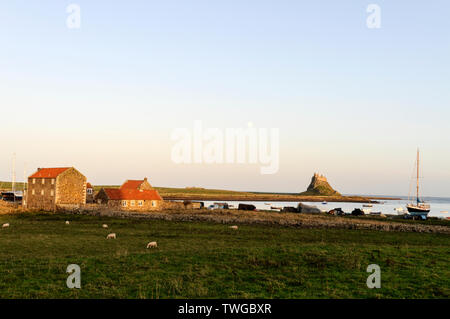 Late autumn sunlight  on the beach near to Lindesfarne Castle on Holy Island in Northumberland, Britain - Stock Photo