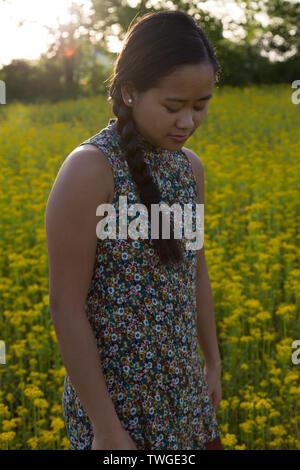 A beautiful teenage girl looks down on a sea of yellow flowers in Fort Wayne, Indiana, USA. - Stock Photo