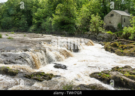 The falls (waterfalls) on the River Teifi at the village of Cenarth in Carmarthenshire, Wales, UK - Stock Photo
