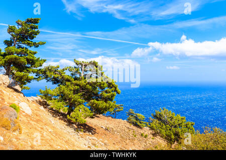 Green pine trees on high cliffs above sea on Karpathos island, Greece - Stock Photo