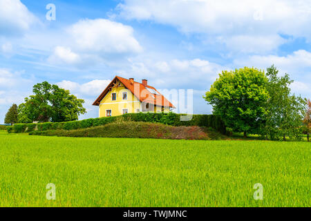 Yellow traditional house with red tile roof on green meadow in spring landscape of Burgerland in Strem village, Austria - Stock Photo