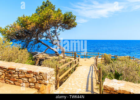 Viewpoint on coastal path from Palafrugell to Llafranc on beautiful summer day, Costa Brava, Spain - Stock Photo