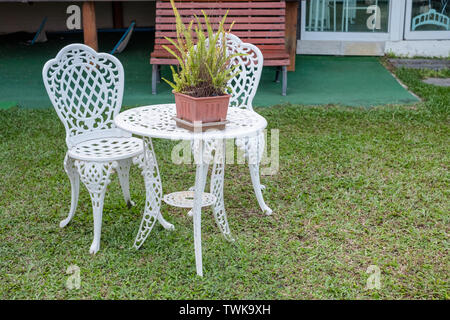 White vintage table and chairs with fern plant in vase on lawn backyard - Stock Photo