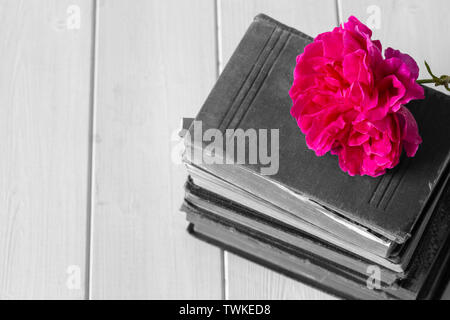 Rose flower on top of a pile of old antique books.  On a white wood surface. With selective colour - Stock Photo