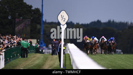 Ascot Racecourse, Windsor, UK. 21st June, 2019. Royal Ascot Horse racing; Race 4; Coronation Stakes; runners in the race are cheered on by the crowd Credit: Action Plus Sports/Alamy Live News - Stock Photo