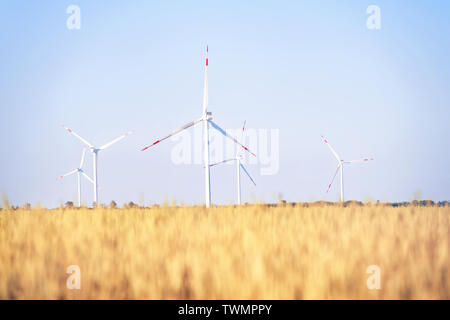 Wind power plant in the golden wheat field. Bright summer landscape - Stock Photo