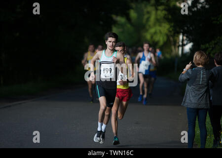 Glasgow, Scotland. 21st June, 2019. The Brian Goodwin Memorial 10km road race, hosted by Bellahouston Harriers running club, and held in Glasgow's scenic Pollok Country Park, was tonight won by Olympian Callum Hawkins in a time of 29minutes 06secs. (Hawkins wears Bib 199, Kilbarchan AAC); 2nd male was Jamie Crow (Bib 108, Central AC)) with a Personal Best time of 29min 43sec, and 3rd male was James Donald (30:11, Bib 130, Dundee Hawkhill Harriers).  Credit: jeremy sutton-hibbert/Alamy Live News - Stock Photo