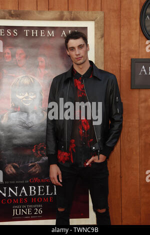June 20, 2019 - Westwood, CA, USA - LOS ANGELES - JUN 20:  Calvyn Justus at the ''Annabelle Comes Home'' Premiere at the Village Theater on June 20, 2019 in Westwood, CA (Credit Image: © Kay Blake/ZUMA Wire) - Stock Photo