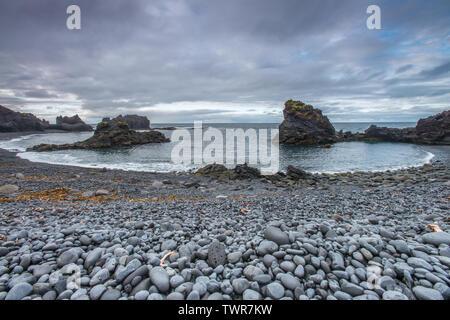 Rainy day at Dritvik cove, dark rock beach with circular coast, dark volcanic cliffs. Seaweeds on the beach. - Stock Photo
