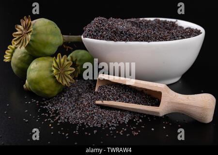 Green poppy heads on dark seeds. Poppy in the kitchen prepared for tasty dishes. Dark background. - Stock Photo