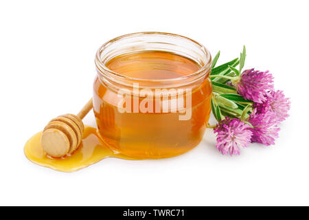 Honey with clover flowers isolated on white background - Stock Photo