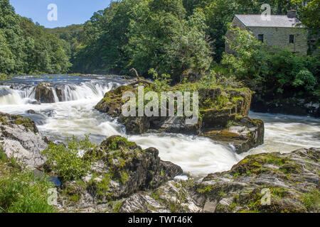 Cenarth Waterfalls in Carmarthenshire on a summer day, West Wales - Stock Photo