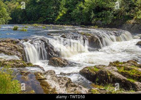Cenarth Falls Carmarthenshire West Wales - Stock Photo