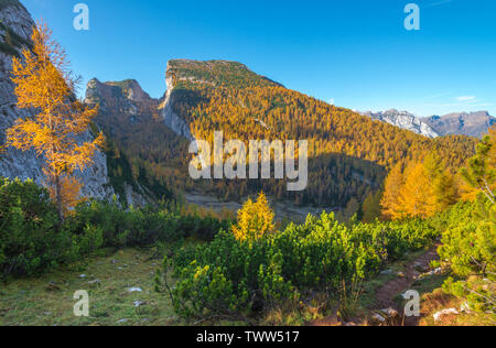 Slanted mountain rises from a quiet meadow, yellow forest surrounding a mountain hut. Fall colours, autumn foliage in the Italian Alps. - Stock Photo