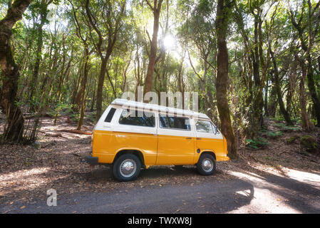 La Gomera, Spain - January 16, 2016: Classic camper Volkswagen T2 van on the road in a green forest . - Stock Photo