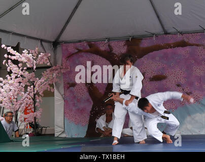 Denver, Colorado - June 22, 2019: Karate Demonstration on 47th Annual Cherry Blossom Festival on Sakura Square in downtown Denver - Stock Photo