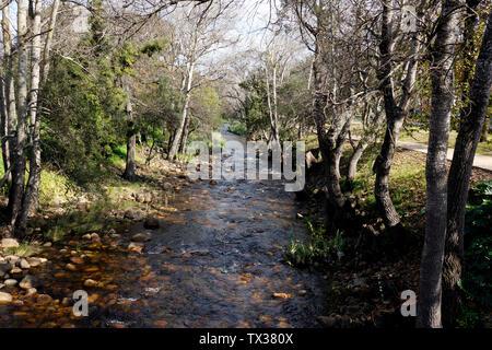 Eerste River  , Stellenbosch, South Africa - Stock Photo