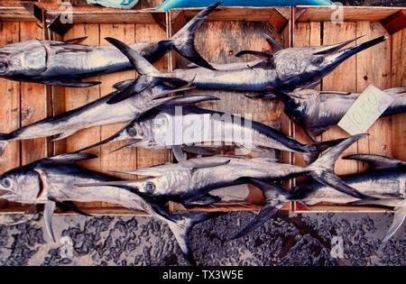 Swordfish for sale at fish market Catania Sicily Italy - Stock Photo