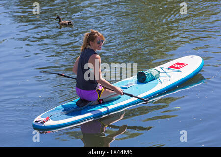 Woman paddleboarder paddle boarder kneeling down relaxing on paddleboard paddle board on Dorset Dinghy Day at River Stour, Iford, Dorset UK in June - Stock Photo