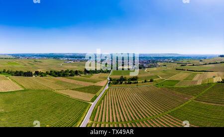 Germany, Hesse, Oestrich-Winkel, Rheingau, Aerial view of Schloss Vollrads, vine yards - Stock Photo