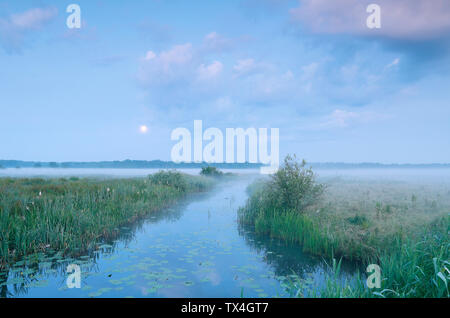 misty tranquil dusk with full moon over river in summer - Stock Photo