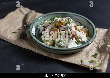 Bowl of fried potato salad with cucumber, red radish, spring onions and mayonnaise yoghurt dressing