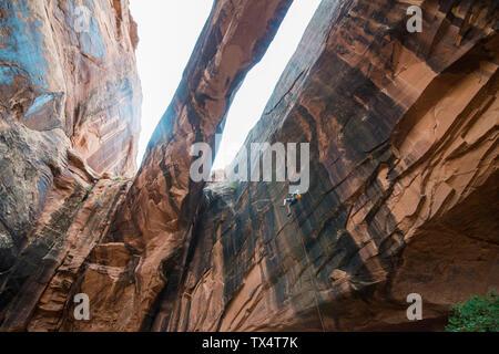 USA, Utah, Moab, Canyonering, Woman rapelling down a giant arch - Stock Photo