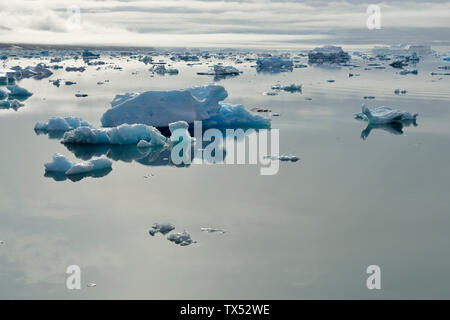 Greenland, East Greenland, Johan Petersens Fjord, Icebergs and drift ice - Stock Photo