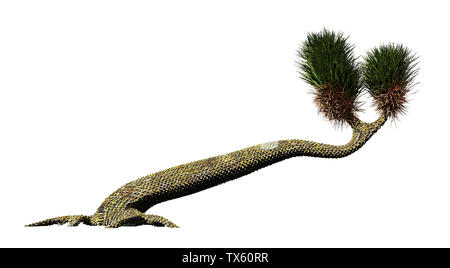 Sigillaria, tree-like plant from the Carboniferous and Permian period isolated on white background - Stock Photo