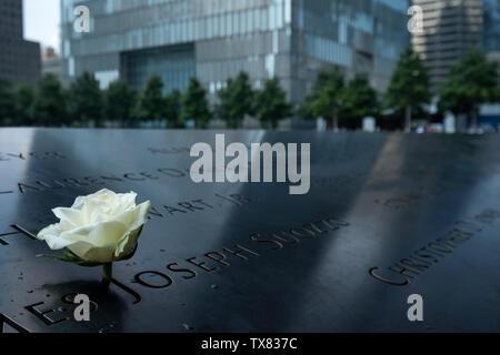 A Rose on the Ground Zero Memorial in the shadow of the One World Trade Center, New York, USA - Stock Photo