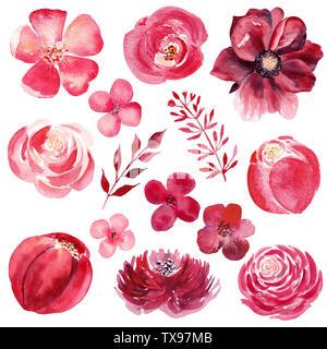 Burgundy flowers hand drawn watercolor illustration set. Botanical, natural design raster drawing. Colorful, vibrant illustration on white background. - Stock Photo
