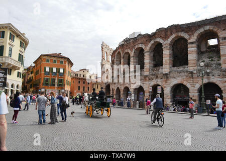 Verona/Italy - May 9, 2015: Two horses carriage moving in Piazza Bra along Arena di Verona, the famous summer open stage theater. - Stock Photo