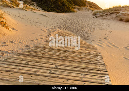 Payment. Wooden path over the sand of the beach dunes at sunset, in Trafalgar, Cadiz, Spain. - Stock Photo