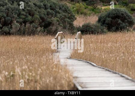 Wooden deck causeway bridge running through dry fields - Stock Photo