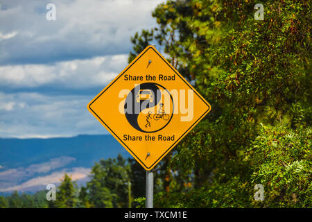 Share the Road yellow sign on green leaves and blue sky background. - Stock Photo