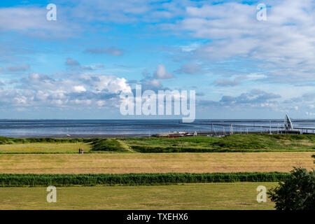 Salt marshes on Juist an East Frisian island in Germany in summer. - Stock Photo