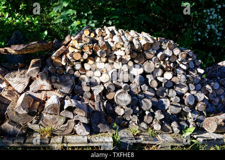 A firewood pile full of chopped and split dry firewood ready to burn for winter. - Stock Photo