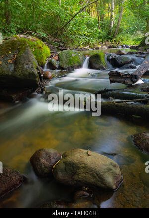Long exposure silky water stream running through mountain rocks in the woods. Fast natural cold creek with mossy rocks in between - Stock Photo