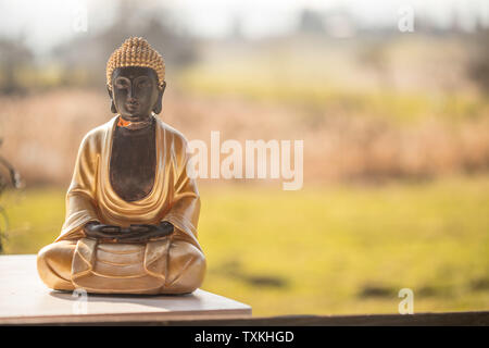 Buddha statue at an Indian temple, summer time. Text space. - Stock Photo