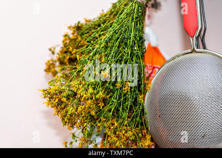 Kitchen utensils hanging on wall with sieve metal sifter and drying medicinal green herb with yellow flowers called Saint John's wort - Stock Photo