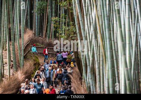 Kyoto, Japan - April 11, 2019: Arashiyama bamboo forest park during day with crowd of many people tourists walking on trail road path - Stock Photo