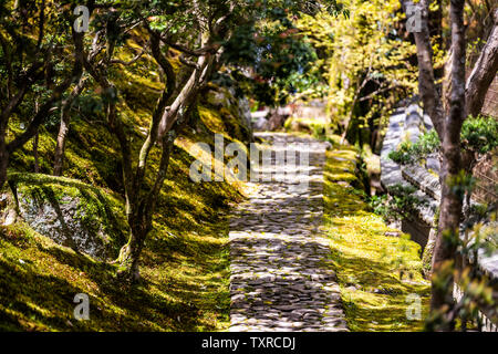 Nara, Japan traditional garden during spring with old stone path road closeup in Japanese style - Stock Photo