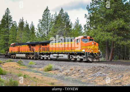 Powerful Diesel locomotives pulling a freight train on a railway through a forest on a cloudy summer day - Stock Photo