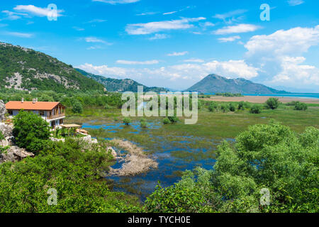 Skandar lake and flooded field, Virpazar, Montenegro - Stock Photo