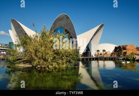 VALENCIA , SPAIN - NOVEMBER 7, 2016.  Oceanographic building, a Spanish oceanarium inaugurated in 2002, in  Valencia, Spain. - Stock Photo