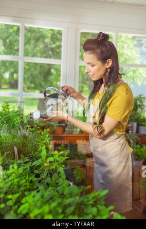 Beautiful florist watering flowers in her shop. - Stock Photo