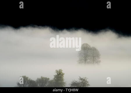 Foggy landscape, near Oberweser, Weser Uplands, Weserbergland, Hesse, Germany - Stock Photo