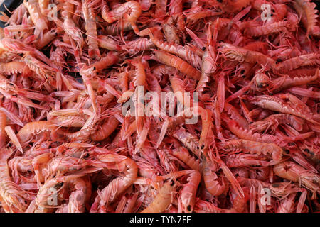 Prawns for sale at a fish market in Croatia.