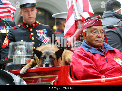 Jonny, a retired military service dog, takes it easy as he rides on an antique fire truck with veterans during the 92nd Annual Veterans Day Parade on November 11, 2013 in New York City. An estimated 20,000 veterans of all eras will march in the nation's largest Veterans Day Parade as they are honored for their U.S. military service.     UPI /Monika Graff. - Stock Photo